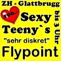 http://www.flypoint.ch/de/start